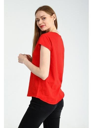 Collezione Tişört Kırmızı